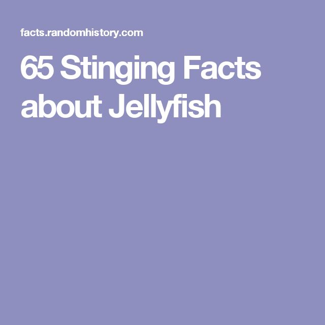 65 Stinging Facts about Jellyfish