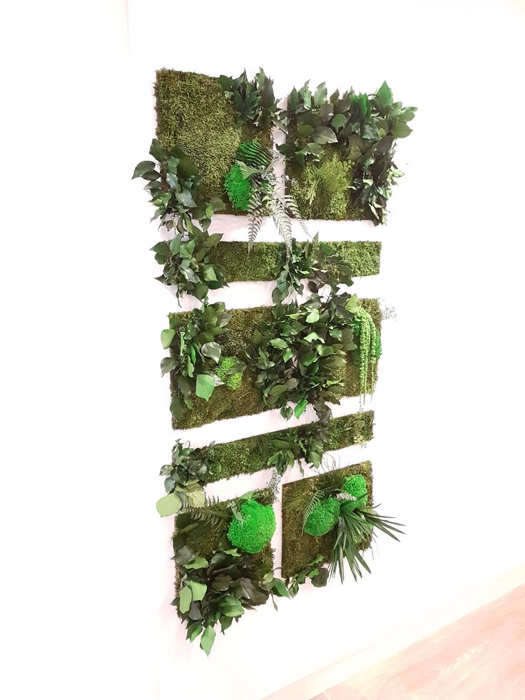 32 best MUR VEGETAL images on Pinterest Wall decor, Indoor and