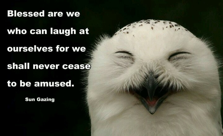 Quotes About Laughing At Yourself Quotes About Laughing ...