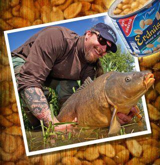 Alles rund um Erdnüsse als Karpfenköder   Carp fishing with peanuts