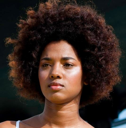 afro textured hair styles 17 best images about best american haircuts 5067