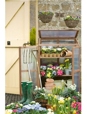 A compact growhouse is a great alternative to a greenhouse in a small garden (Dobbies)