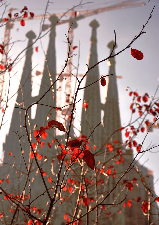 La Sagrada famila in Barcelona from a different perspective