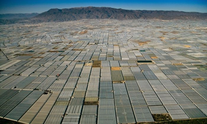 Over population, over consumption - in pictures | Global Development Professionals Network | The Guardian