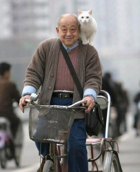 A man with a bicycle AND a cat.