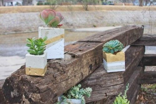 Straight forward instructions!! Cool DIY Cement Planters For Succulents | Shelterness