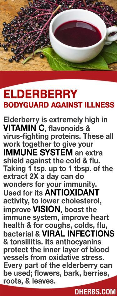 Elderberry is extremely high in vitamin C, flavonoids & virus-fighting proteins that work together to give your immune system an extra shield against the cold & flu. Taking 1 tsp. to 1 tbsp. of the extract 2X a day can do wonders for your immunity. Its antioxidant activity lowers cholesterol, improve vision, boosts immunity, improves heart health & heals bacterial & viral infections & tonsillitis. Its anthocyanins protect the inner layer of blood vessels from oxidative stress. #L4L…