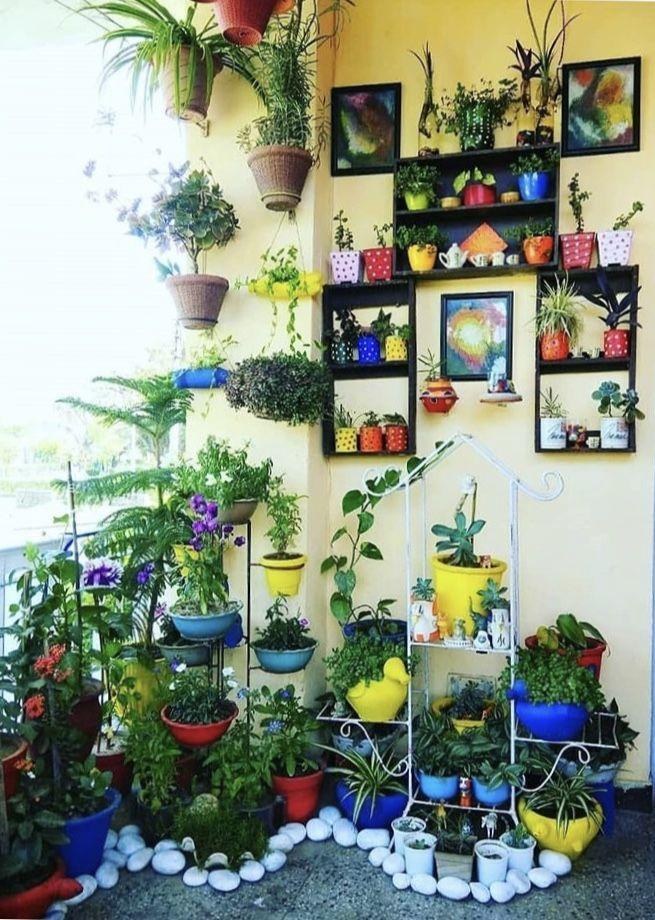 Contest Winning Entries Mygreencorner Design Decor Travel Vertical Garden Design Outdoor Patio Decor Terrace Decor