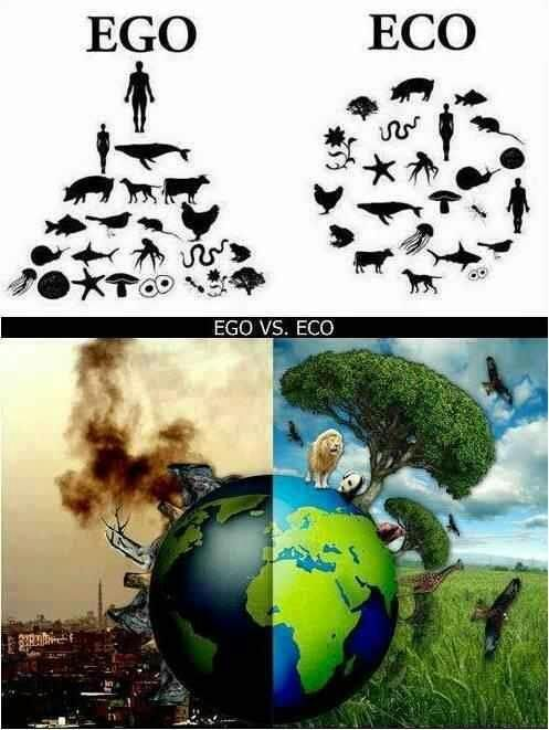 Ego vs Eco....conciencia!!