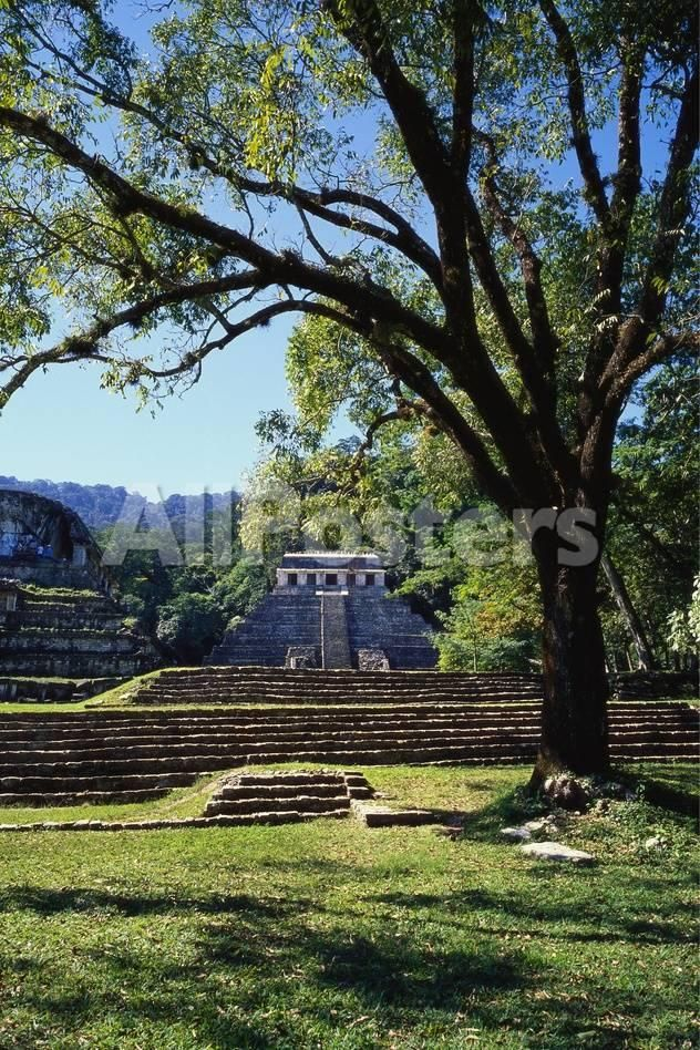 Ancient Mayan Temple, Palenque, Chiapas, Mexico by Mary Jean Weber Landscapes Photographic Print - 41 x 61 cm