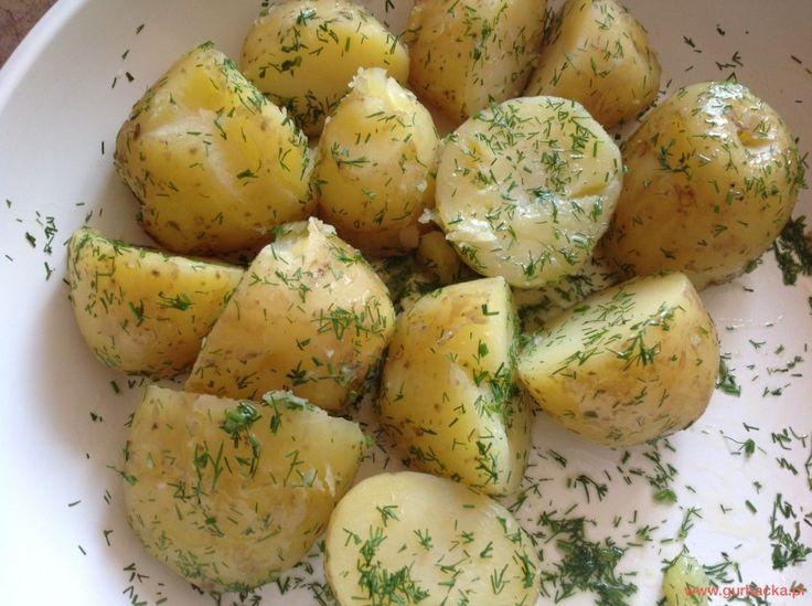 gotowane ziemniaki przepisy katarzyna gurbacka