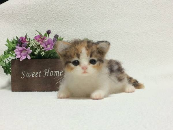How adorable is this baby!  Needle felted kitten by mochinokix  on Yahoo Auctions Japan