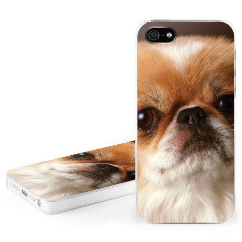 Étuis pour iPhone 5 - chien Pékinois: Amazon.fr: High-tech