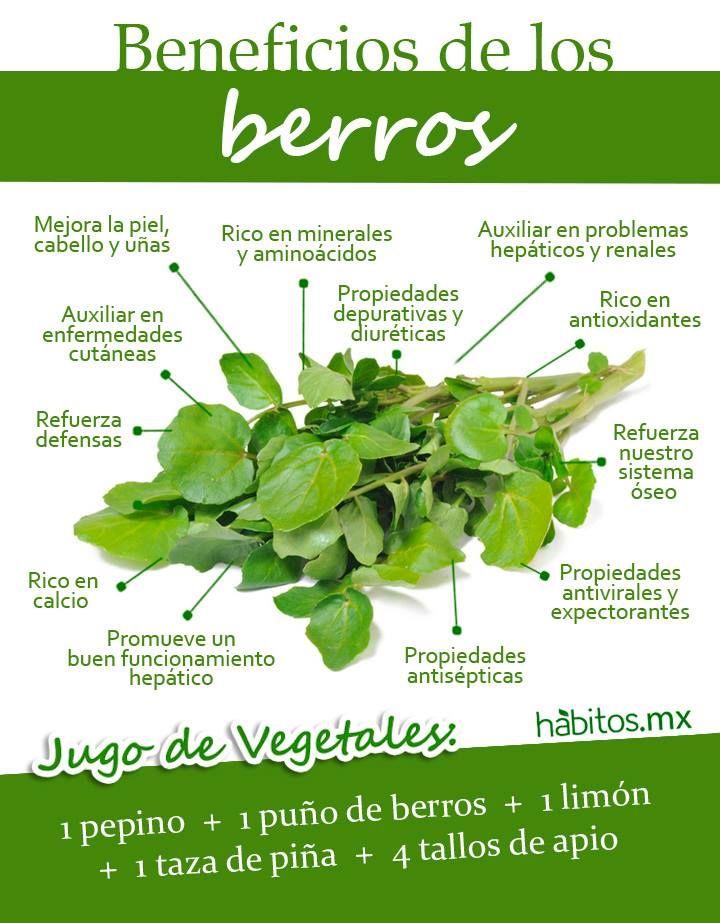 173. Beneficios del berro. De Habitos .mx