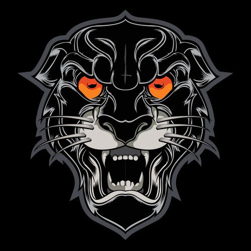 tiger tee shirt design - Custom T Shirt Design