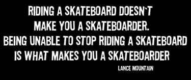 Riding a skateboard doesn't make you...