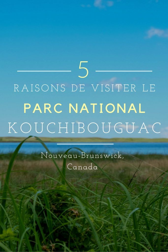 5 raisons de découvrir le magnifique Parc national Kouchibouguac au Nouveau-Brunswick. #Canada #ParcsCanada #Voyages