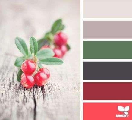Kleurinspiratie kerst