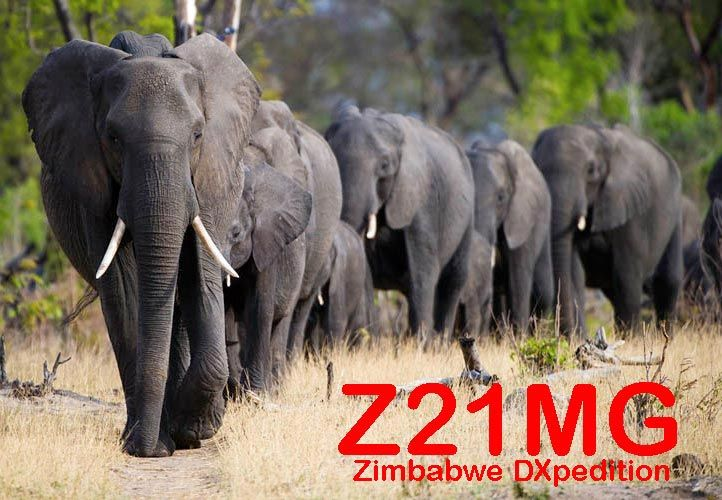 Z21MG Activation DX au Zimbabwe