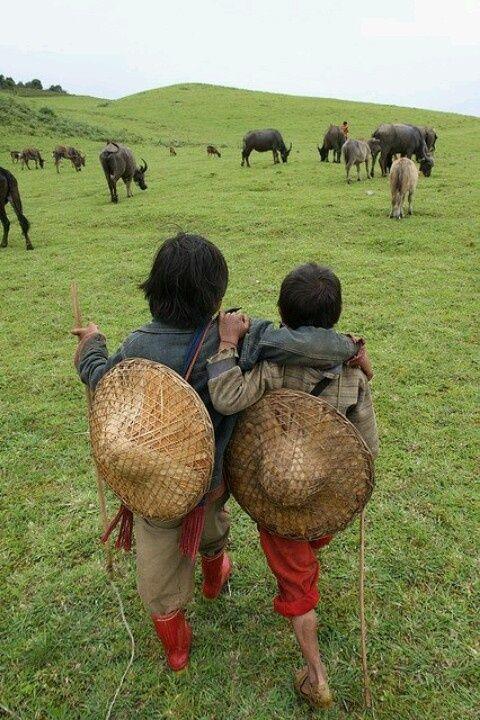 les enfants du Tibet                                                                                                                                                                                 Plus                                                                                                                                                                                 Plus