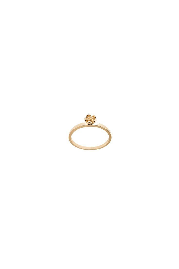 Botanical Plain Ring Gold - Karen Walker Jewellery   Karen Walker