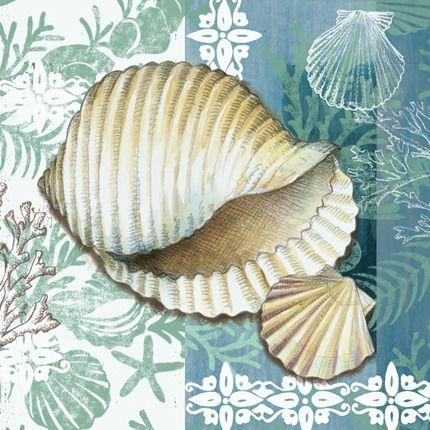 Medium caracol sea shell E Vladykina
