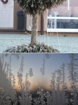 """Na minusie, ale za to pięknie"". Śnieżne fotorelacje Reporterów 24. http://tvnmeteo.tvn24.pl/informacje-pogoda/polska,28/na-minusie-ale-za-to-pieknie-sniezne-fotorelacje-reporterow-24,188644,1,0.html"