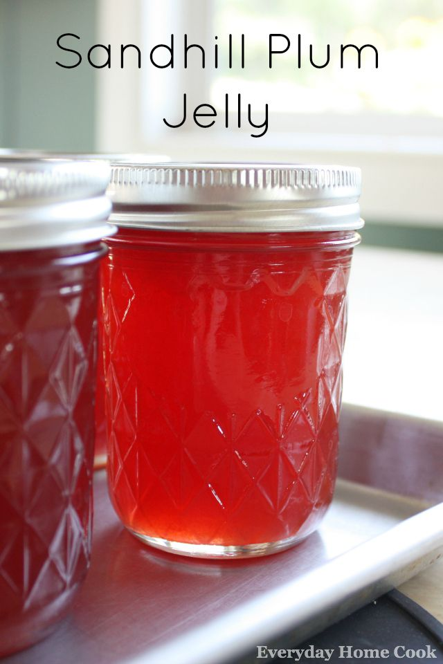 Sandhill Plum Jelly!  Just love the beautiful color and sweet/sour taste :)