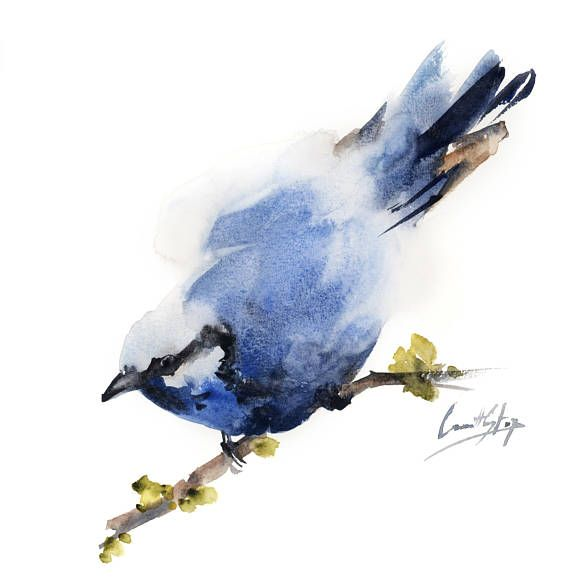 Minimalist Bird Original watercolor painting painting of