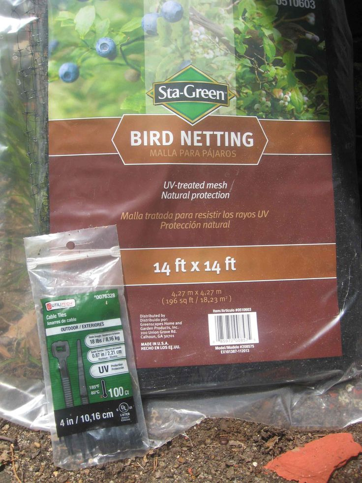 Many years ago I tried draping deer netting over my blueberry bushes. It was a complete failure. I didn't secure the netting at ground level so the birds got up under the net, it was a pain t…