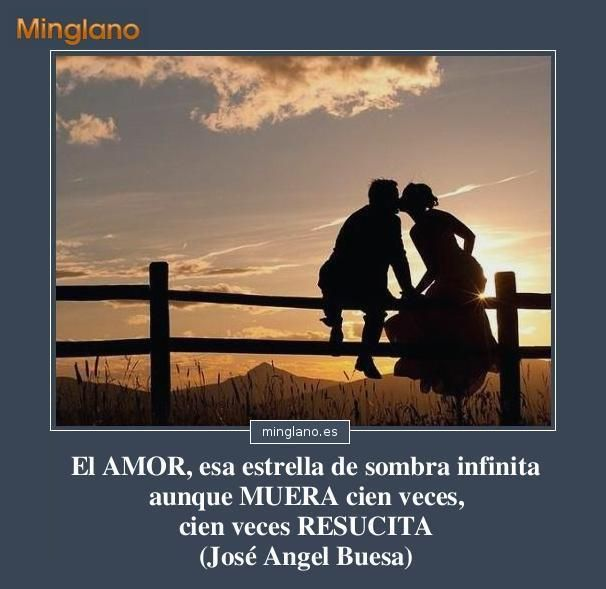 Frases De Poetas Famosos Sobre El Amor Paloma Pinterest Love