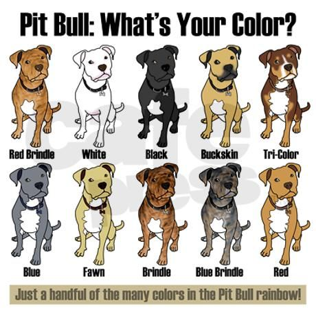 Pit Bull: Whats Your Color? Keepsake -- Well, not exactly a full-blown color chart, but it shows a couple of different colors, so hey...it counts, right?