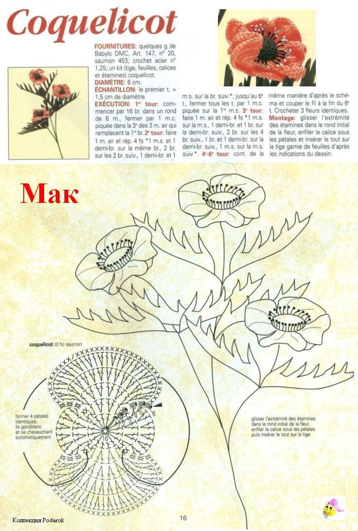 Cute flower with diagram