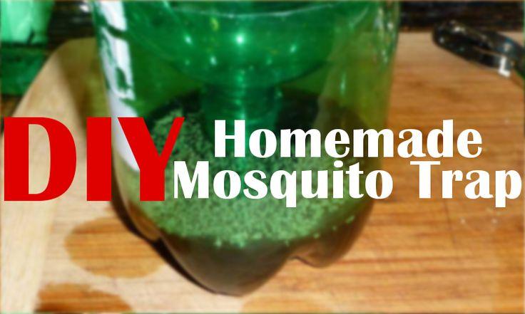 DIY Homemade Mosquito Trap