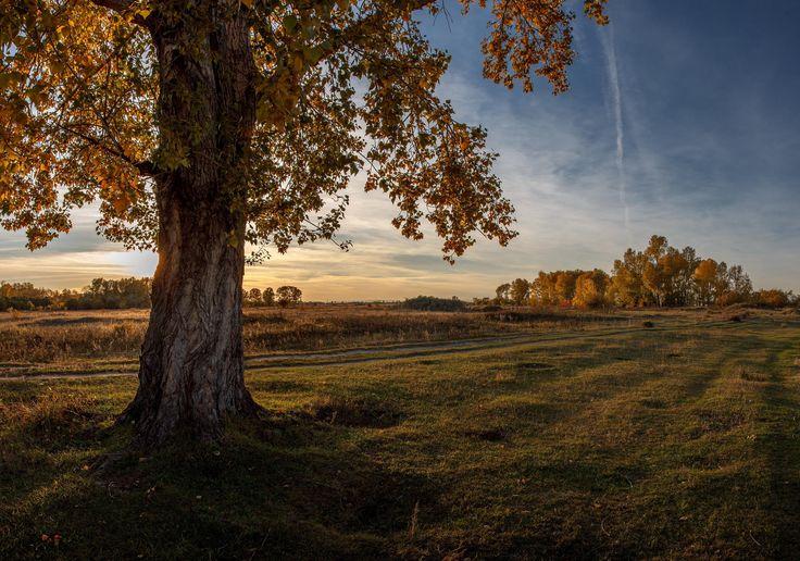 Quiet autumn evening. (Тихий осенний вечер) by Евгений Герасименко on 500px