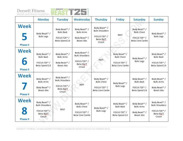 body beast focus t25 hybrid workout page 2 workout calendars pinterest workout fitness. Black Bedroom Furniture Sets. Home Design Ideas