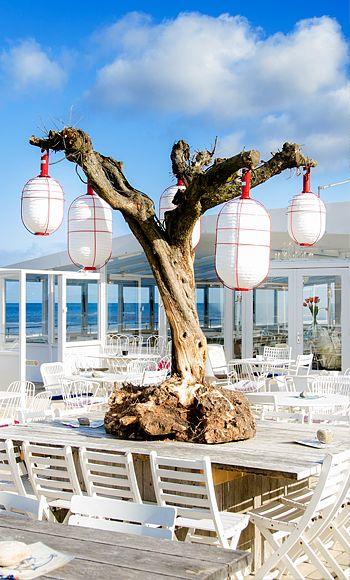 Strandpaviljoen Noord is geopend van april t/m oktober.  Dagelijks vanaf 9.00 uur, de keuken is geopend van 10.00 tot 22.00 uur.  Reserveren? 072 58 14940 C.F. Zeilerboulevard 3, 1865 BB, Bergen aan Zee http://www.strandpaviljoennoord.nl
