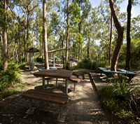 Toohey Forest Park - hiking, wildlife, wildflowers, Griffith University. Mount Gravatt Outlook, great views including Moreton Island.