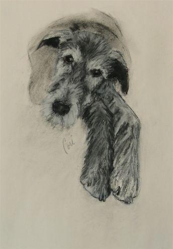 ART HELPING ANIMALS..Irish Wolfhound by Cori Solomon