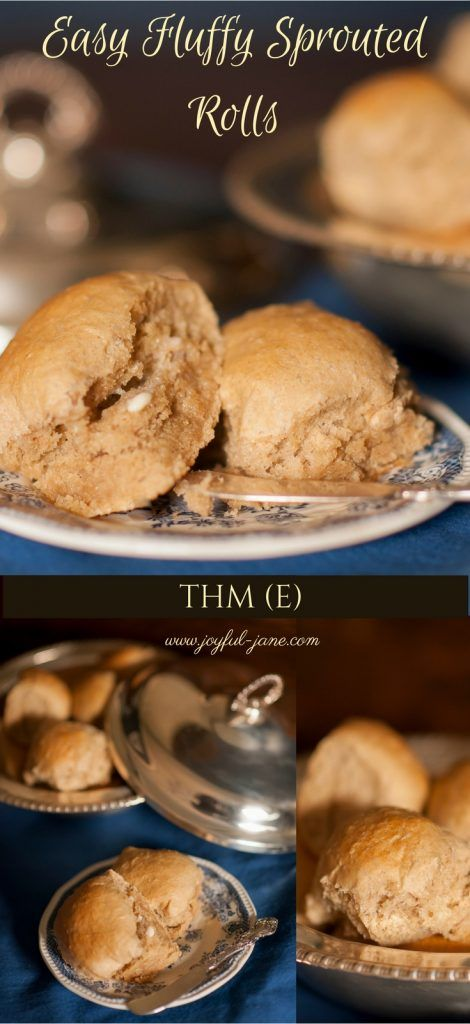Easy Fluffy Sprouted Whole Wheat Rolls (THM E)- Joyful Jane SUPER quick and easy method for making healthy bread and rolls FAST! So soft and fluffy! Great for Trim Healthy Mama!