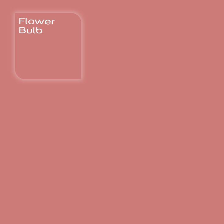 Flexa Creations kleur: Flower Bulb. Klik op de foto om een Flexa Kleurstaal in deze kleur te bestellen. Vooraf de kleur op de muur in je kamer zien geeft vertrouwen.