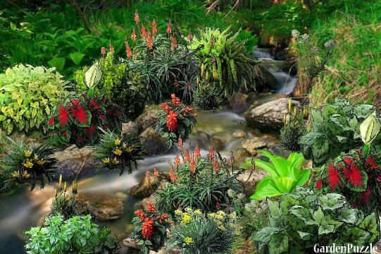 The falls - GardenPuzzle - online garden planning tool