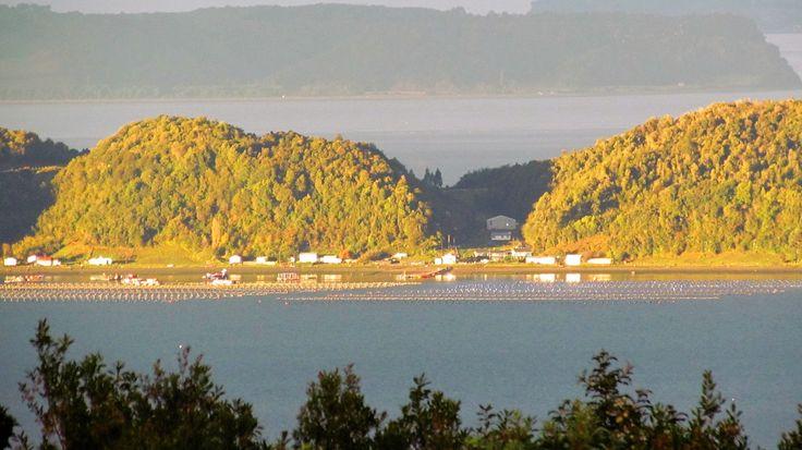 Isla Lemuy en momento de sol