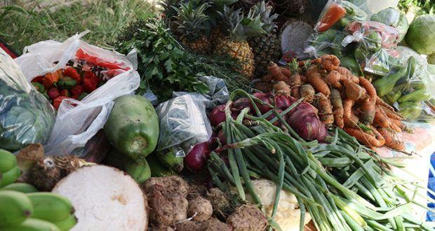 Hacen comunidad en el Mercado Agrícola Natural en Ponce - Voces del Sur