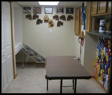 Pet Grooming Room;  Home Remodeling Michigan - Basement, Kitchen & Bathroom Constructional Remodeling