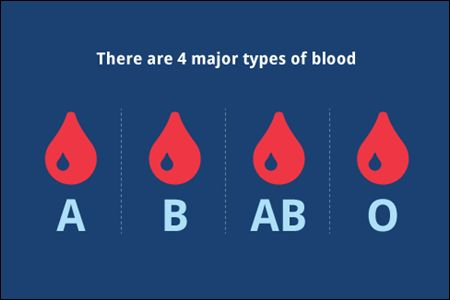 ABO Blood Group System - Blood Group A, B, AB, O #bloodgroup