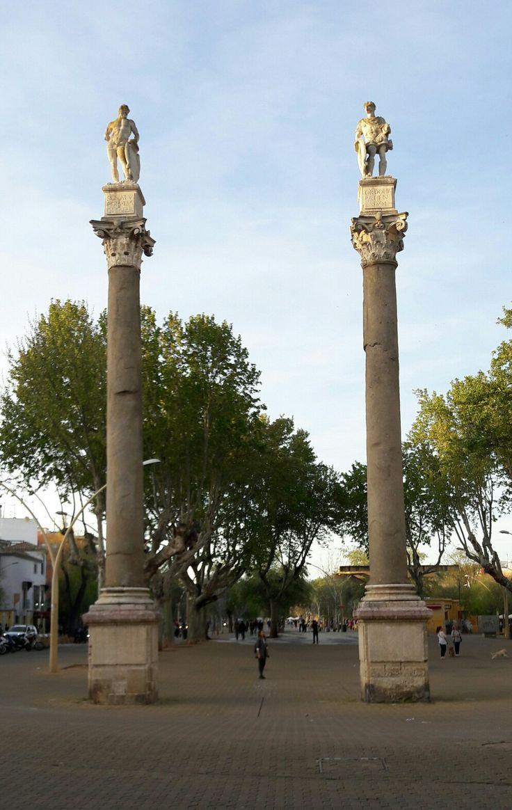 Sevilla. Alameda de Hércules. Sobre dos grandes columnas procedentes de un templo romano se alzan las figuras de Hércules y la de César, coofundadores de la Ciudad según las leyendas.