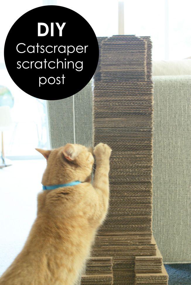 """Catscraper""   DIY cat scratching post / scratcher made from recycled cardboard"