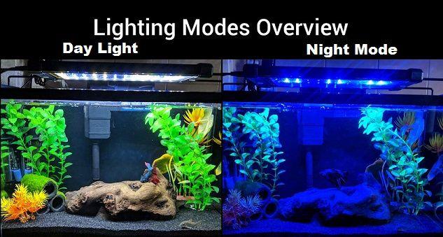 Nicrew Led Aquarium Lights Review Of 2019 Thinkonlypets In 2020 Led Aquarium Lighting Aquarium Lighting Fish Tank Lights