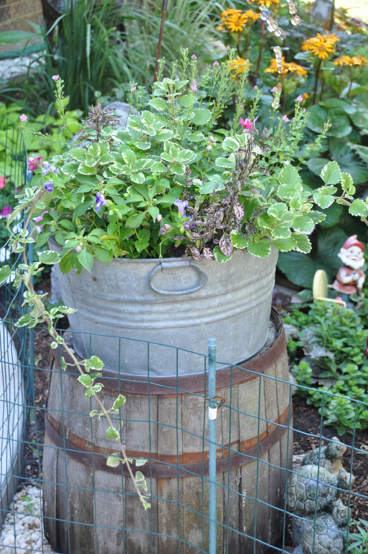 My Whiskey Barrel with Galvanized WashTub with an assortment of plants ... this is in a shade garden facing the West.: Gardens Ideas, Container Gardens, Cottages Gardens, Gardens Whimsy, Prim Gardens, Primitive Gardens, Dreams Gardens, Gardens Stuff, Gardens Faces